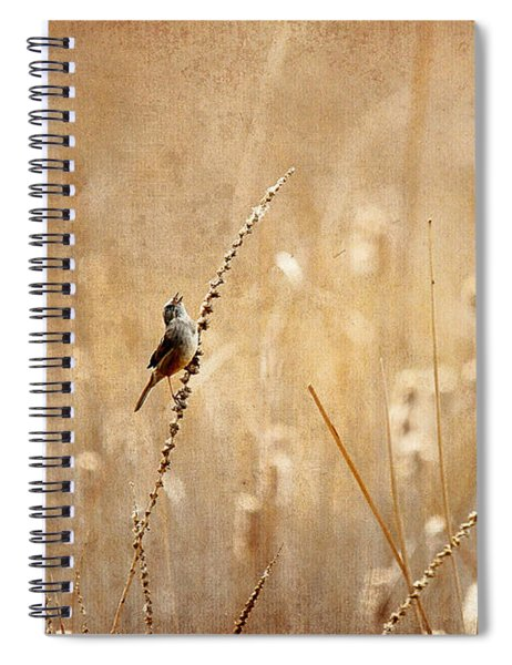 All Rejoicing Spiral Notebook