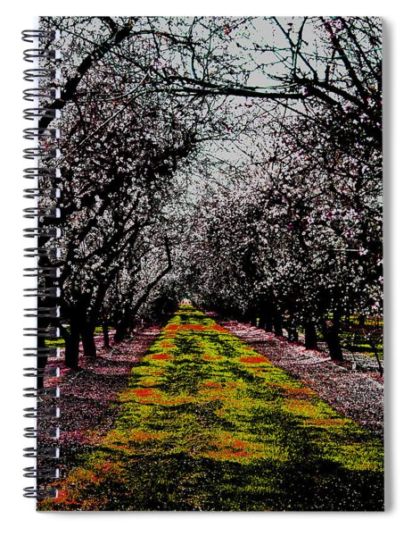 Almond Trees In Bloom Spiral Notebook