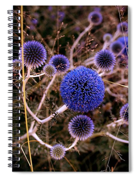 Alternate Universe Spiral Notebook