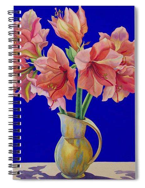Amaryllis In A Jug Spiral Notebook