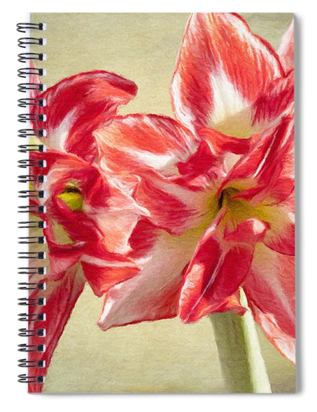 Amaryllis Red Spiral Notebook
