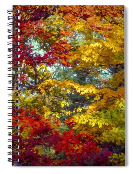 Amber Glade Spiral Notebook