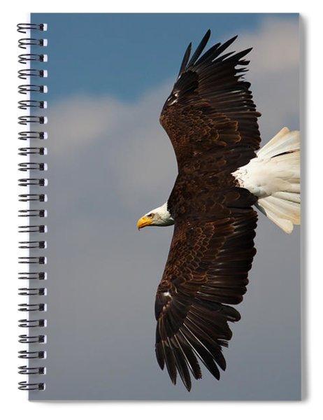 American Bald Eagle In Flight Spiral Notebook