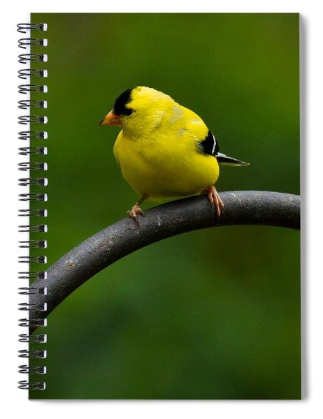 American Goldfinch Spiral Notebook
