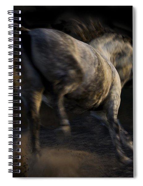 Americano 12 Spiral Notebook