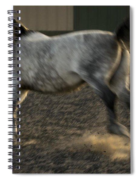 Americano 17 Spiral Notebook
