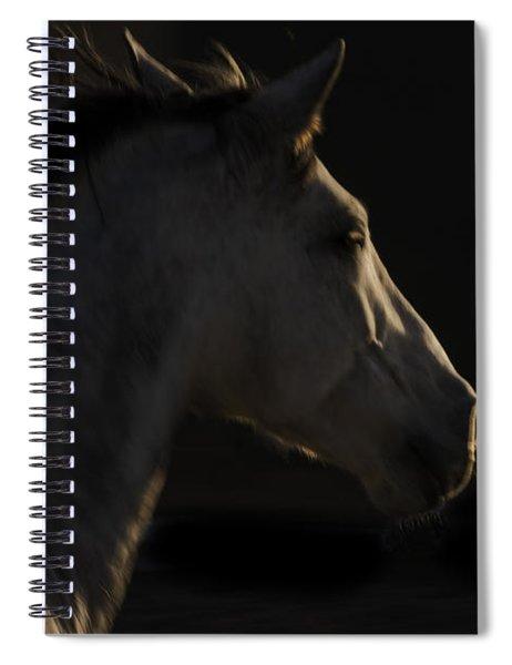 Americano 18 Spiral Notebook