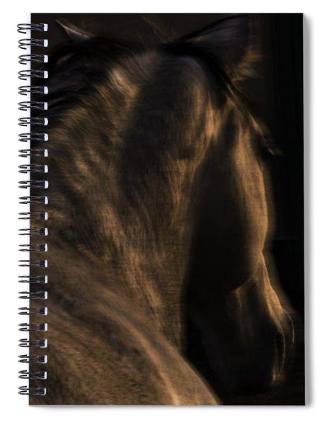 Americano 19 Spiral Notebook