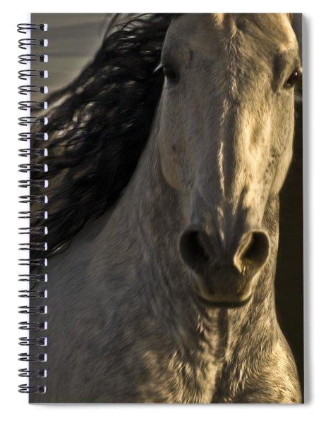 Americano 3 Spiral Notebook