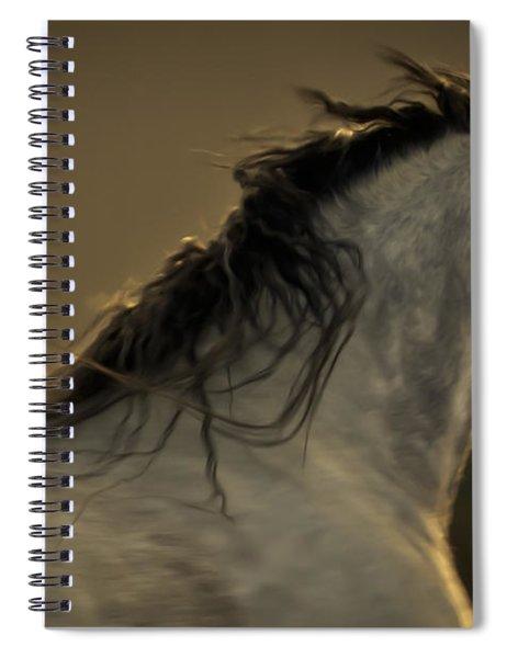 Americano 4 Spiral Notebook