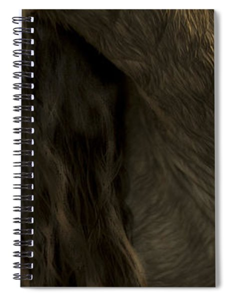 Americano 5 Spiral Notebook