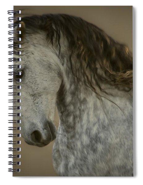 Americano 6 Spiral Notebook