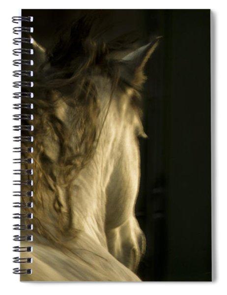 Americano 7 Spiral Notebook