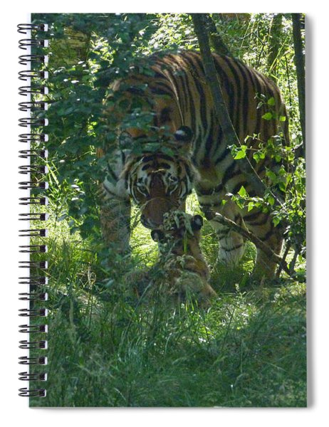 Amur Tigress And Cub Spiral Notebook