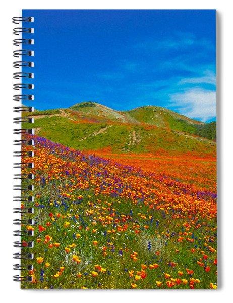 An Ocean Of Orange  Spiral Notebook