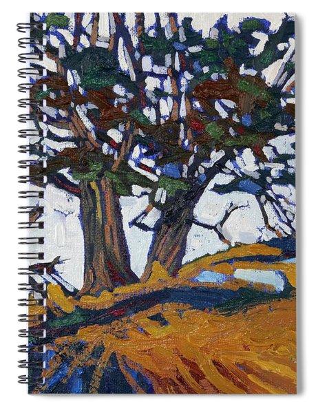 Ancient Red Cedars Spiral Notebook