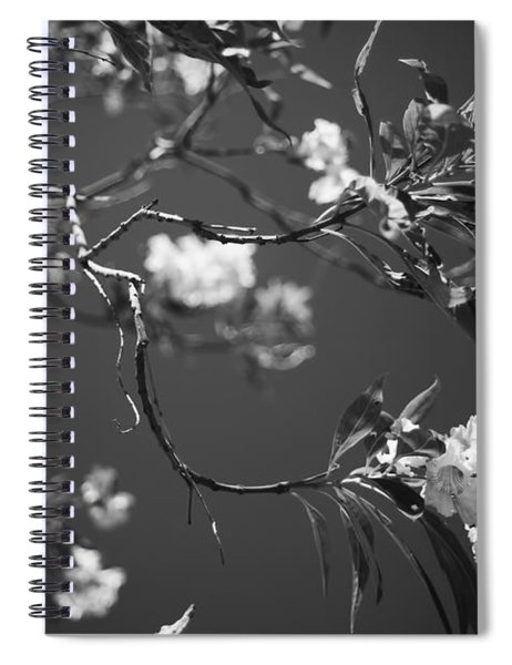 And Spring Became The Summer Spiral Notebook