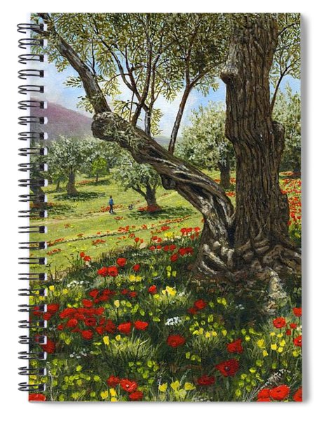 Andalucian Olive Grove Spiral Notebook