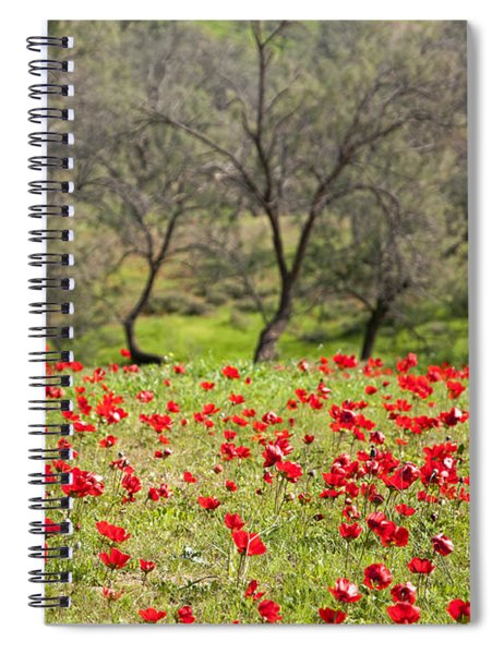 At Ruchama Forest Israel Spiral Notebook