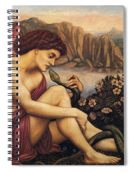 Angel With The Serpent Spiral Notebook