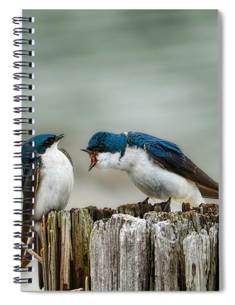 Angry Swallow Spiral Notebook