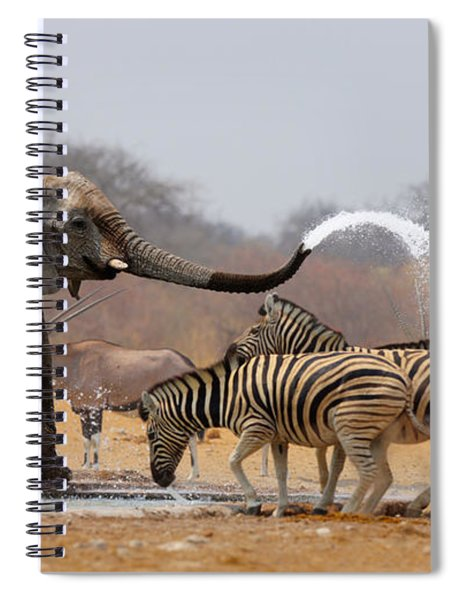 Animal Humour Spiral Notebook
