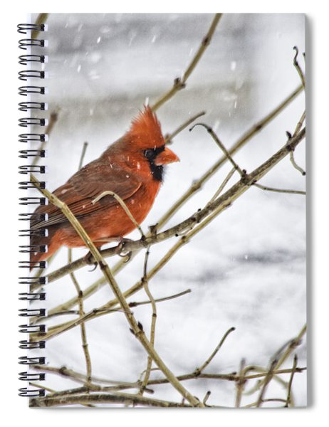 Another Snowy Day Spiral Notebook