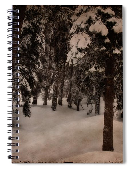 Antique Woodscape Spiral Notebook