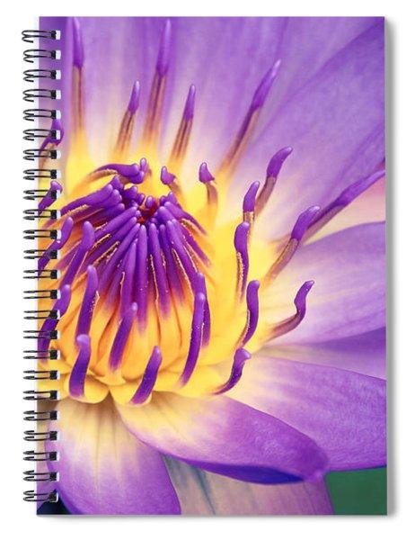 Ao Lani Heavenly Light Spiral Notebook