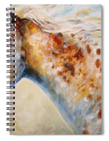 Appaloosa Spirit 3618 Spiral Notebook