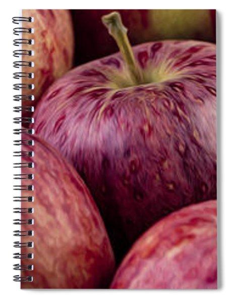 Apples 01 Spiral Notebook by Nailia Schwarz