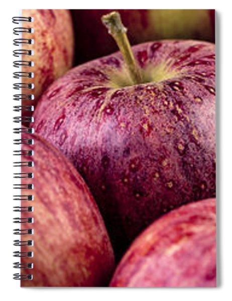 Apples 02 Spiral Notebook