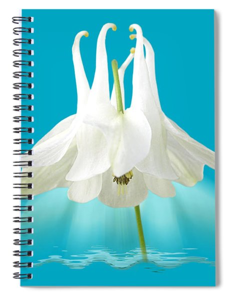 Aquilegia Spotlight Spiral Notebook