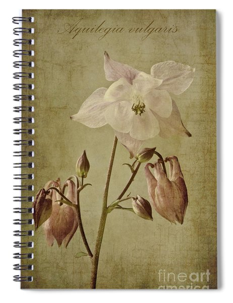 Aquilegia Vulgaris With Textures Spiral Notebook