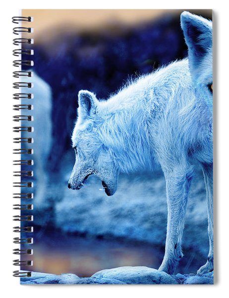 Arctic White Wolves Spiral Notebook
