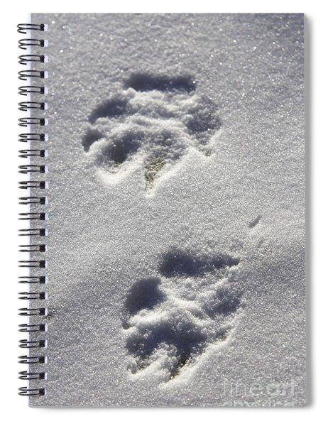 Arctic Wolf Tracks Spiral Notebook