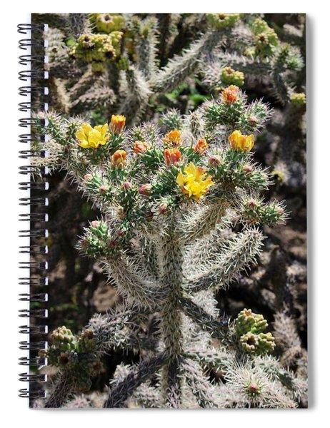 Arizona Cactus Spiral Notebook