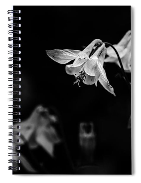 As Darkness Falls Spiral Notebook