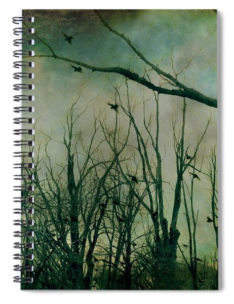 As Night Apaproaches  Spiral Notebook