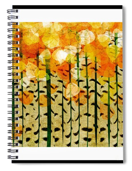 Aspen Colorado Abstract Square 4 Spiral Notebook