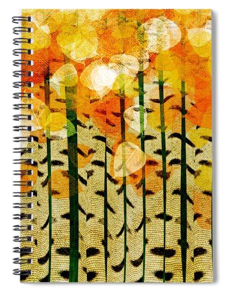 Aspen Colorado Abstract Square 4 Spiral Notebook