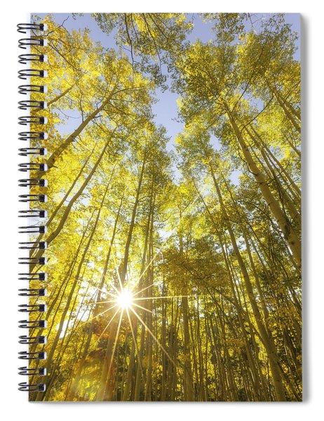 Aspen Day Dreams Spiral Notebook