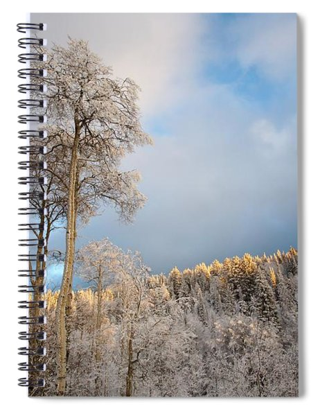 Aspen In Blue Spiral Notebook