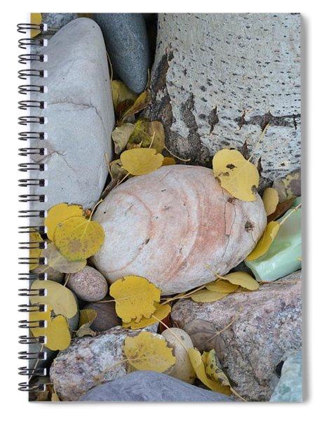 Aspen Leaves On The Rocks Spiral Notebook