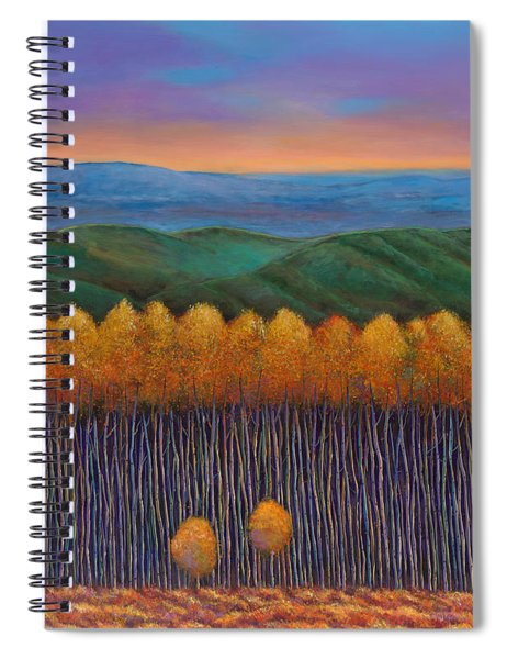 Aspen Perspective Spiral Notebook
