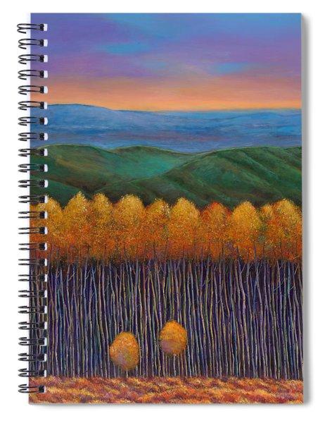 Aspen Perspective Spiral Notebook