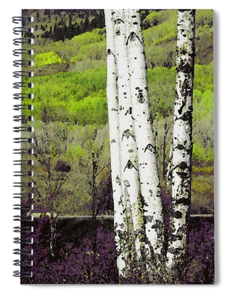 Aspens 4 Spiral Notebook