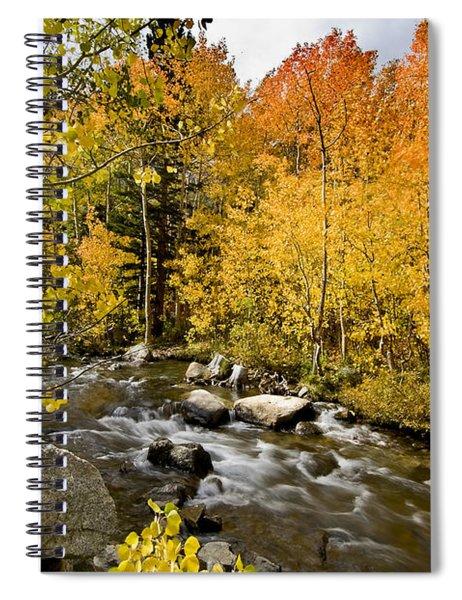 Aspens At Bishop Creek Spiral Notebook