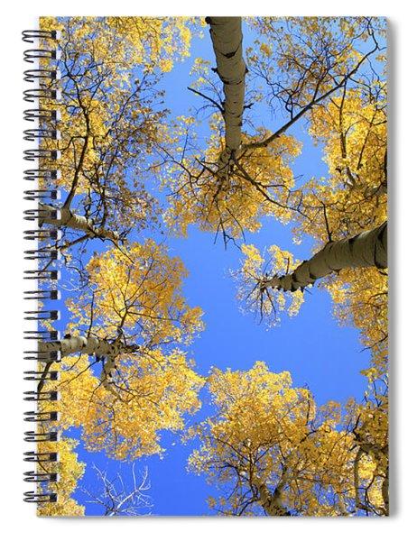 Aspens Skyward Spiral Notebook