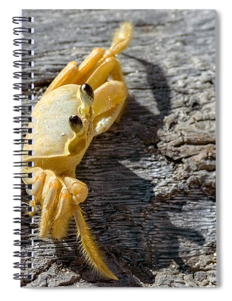 Spiral Notebook featuring the photograph Attitude by Garvin Hunter